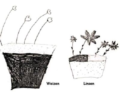 Säen, pflanzen – Gedanken ernten