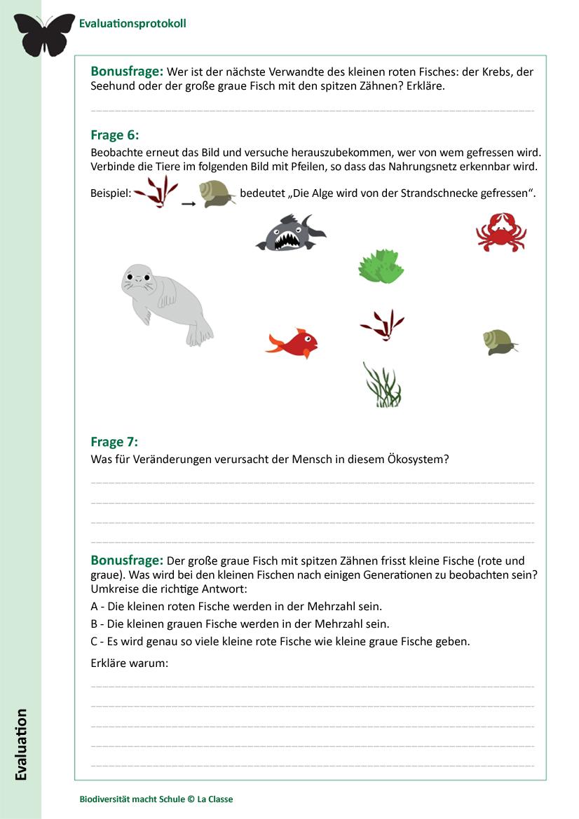 Biodiversität macht Schule!