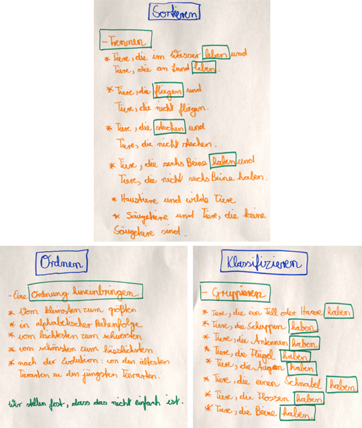 Unterrichtsstunde 4: Ordnung in die Biodiversität bringen: Sortieren ...