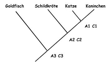 Lebewesen in der Schule klassifizieren: Didaktische Prinzipien